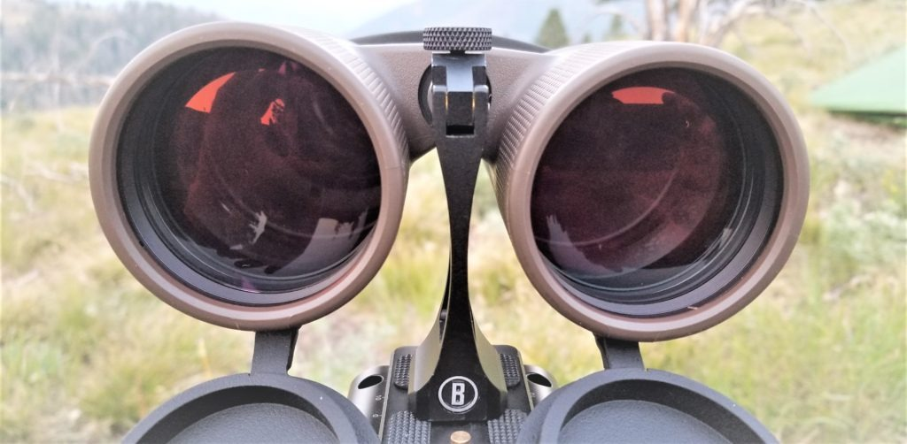 Bushnell Forge 15x56 review