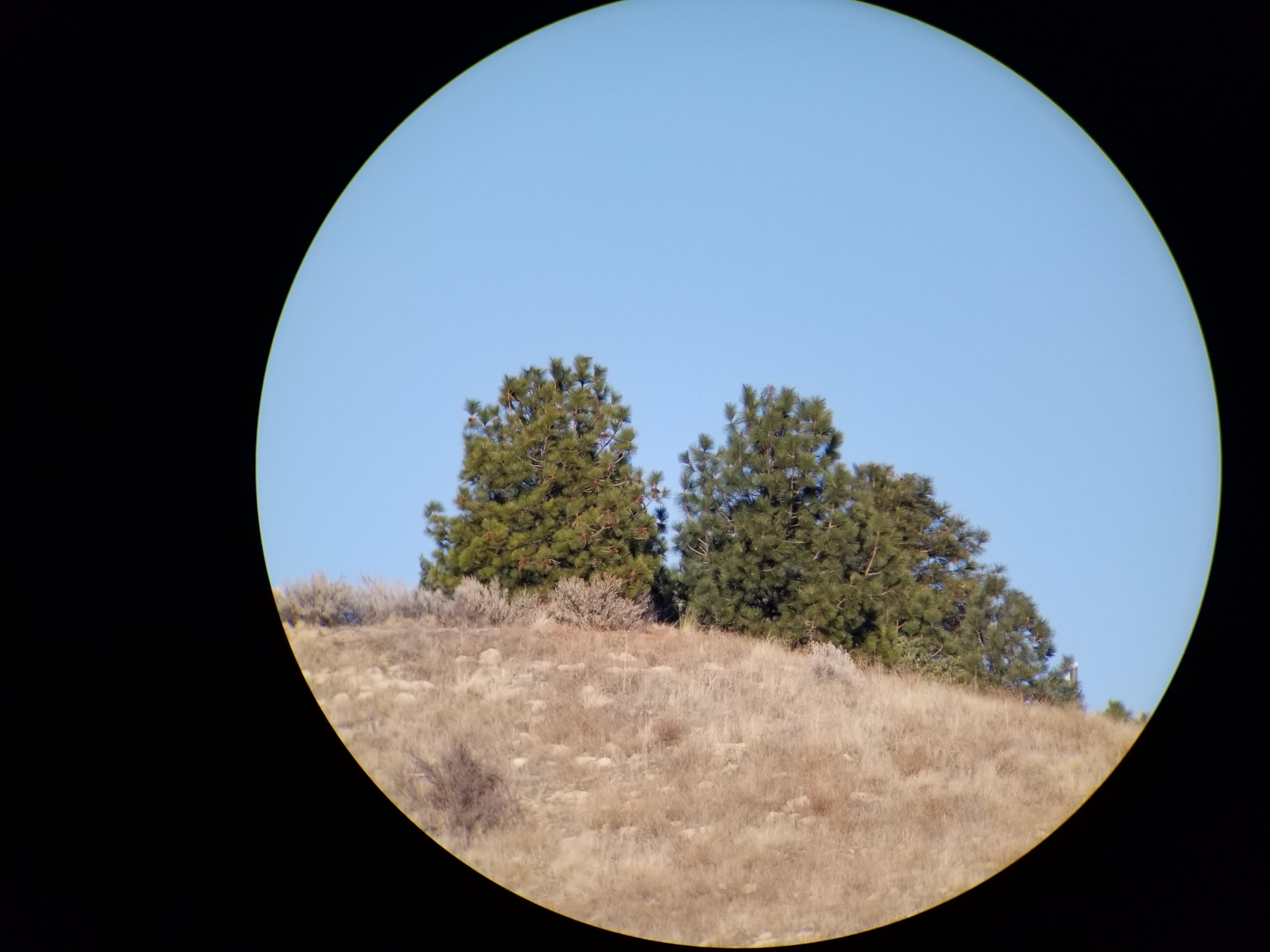 Sig Oscar 8 Spotting Scope Image